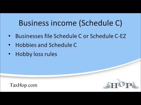 Business income (Schedule C)