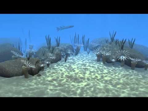 Devonian marine life