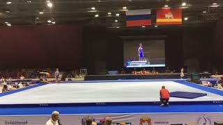 Стретович Иван - вольные упражнения - финал