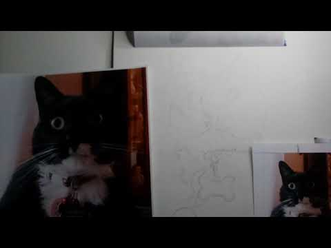 Beginning stage of starting a painting of a cat on Clayboard
