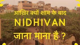 क्या सच में कृष्णा रासलीला करते है Nidhivan में? | Mystery of Nidhivan at Night