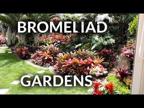BROMELIAD GARDENS