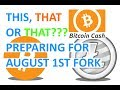 Preparing for Bitcoin Cash BIP91 Fork - What Lightning it means for Litecoin, Dash and others???