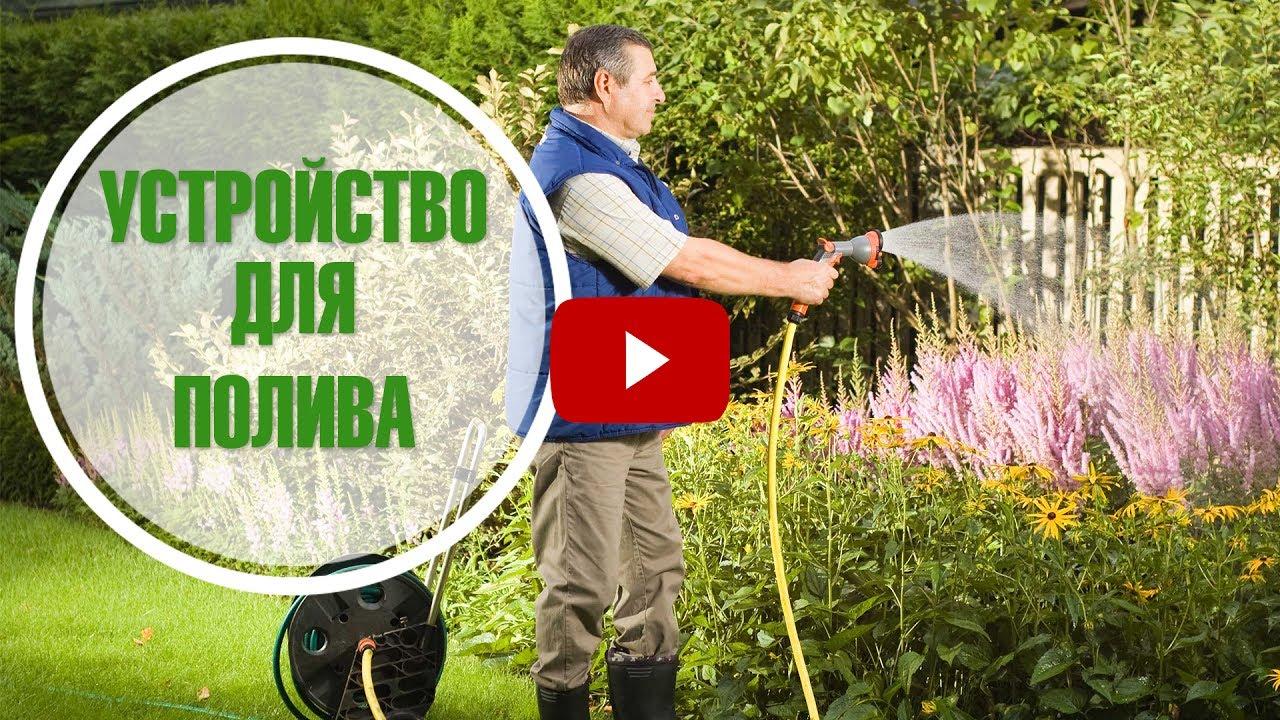 Полив газона -  полезные советы дачникам