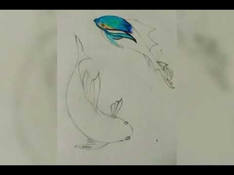 How To Draw 3d Coloured Fish | Pisces Zodiac Sign | D Channel