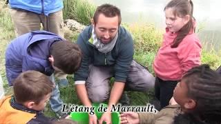 L'Association Avallon Morvan pour la Pêche