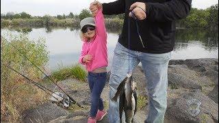 Gambar cover Gone Fishing Idaho