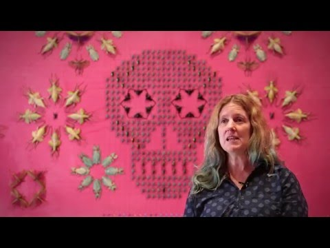 Jennifer Angus Interview for WONDER at the Renwick Gallery