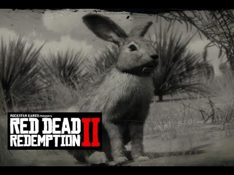 red dead redemption 2 perfect rabbit pelt tips youtube. Black Bedroom Furniture Sets. Home Design Ideas
