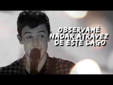 Show You Shawn Mendes Traducida
