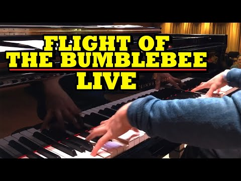 Incredible blind and autistic pianist, Derek Paravicini plays Flight of the Bumblebee! 🎶🐝🎹