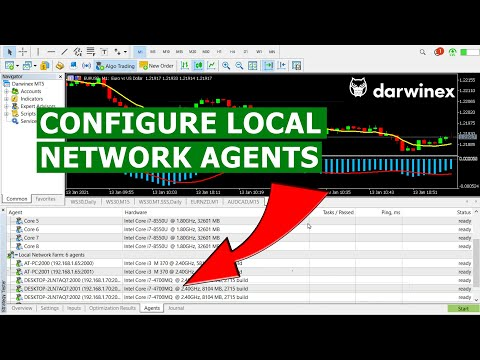 12) How to Configure Local Network Farm Agents in the MT5 Strategy Tester