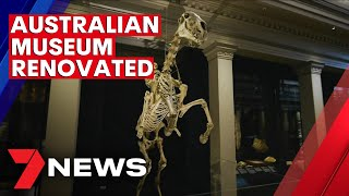 Sydney's Australian Museum has reopened after a renovation | 7NEWS