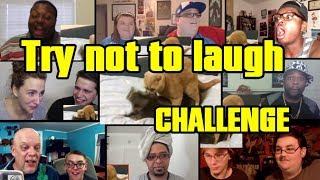 Try not to laugh CHALLENGE - by AdikTheOne REACTIONS MASHUP