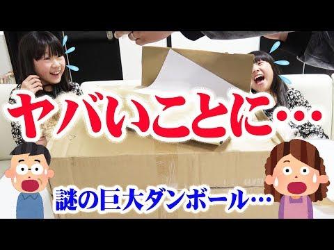 【史上最大のプレゼント‼️】謎の巨大ダンボール箱を開けてみたら…ヤバかった!!【しほりみチャンネル】