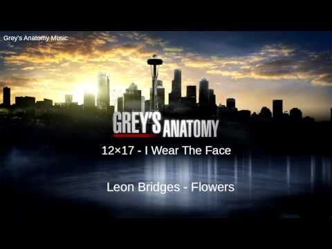 Grey's Anatomy Season 12 Episode 17: Leon Bridges - Flowers