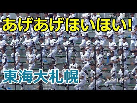 【'17夏】東海大札幌 あげあげほいほい 20170720 北海道栄 戦