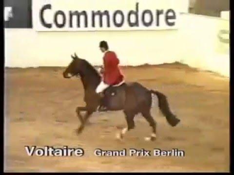 Voltaire - Berlin Grand Prix