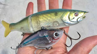 Bass Fishing the S-Waver and the Best Trap You Might Not Know About