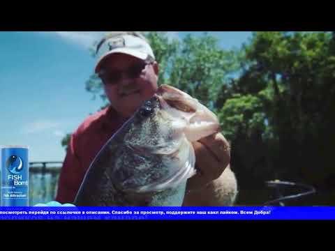 Fish MegaBomb   инновационная приманка для рыбалки