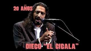 Diego El Cigala 20 Años Wmv Youtube
