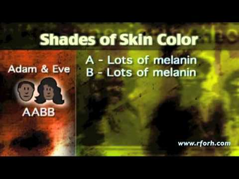 What color were Adam and Eve?
