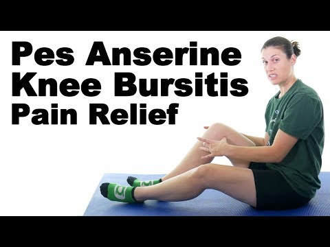 Pes Anserine Knee Bursitis Stretches & Exercises