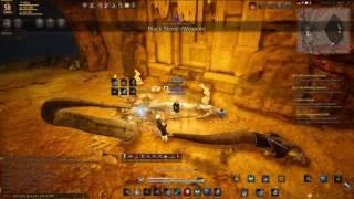 black desert online jp 58 witch farming basilisk