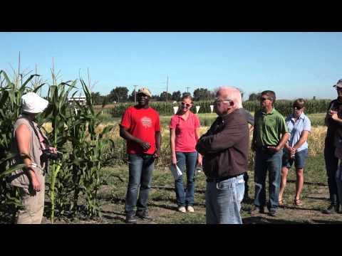 FS Disease Crop Walk Ken Coles, Michael Harding