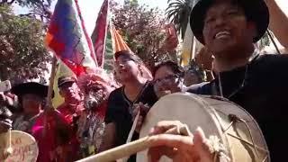 Video: Carnavaleros coplean contra el gobierno en defensa de la cultura