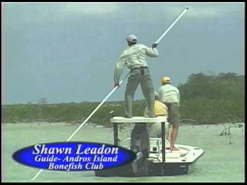 Fly Fishing At Andros Island Bonefish Club
