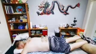 Ancient Art of Healing, Acupuncture & Traditional Chinese Medicine | Lakeland, FL |