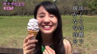 関西出身 ボーカル&ピアノの2人組ユニット K Clef が贈る、サクラだより...