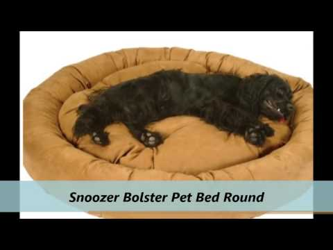 precious-pets-paradise-:-x-large-dog-beds-in-fl