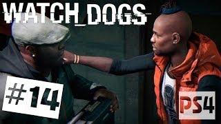Watch Dogs прохождение PS4 - Часть #14 ✔ Братская преданность