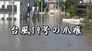 【警戒レベル4相当の氾濫】#床下浸水 #台風19号の爪痕 #氾濫危険水位