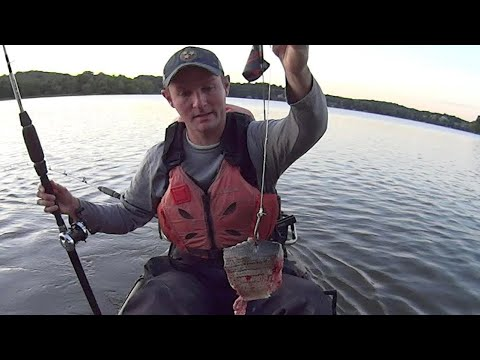 Using BIG Baits For Early Summer Catfish
