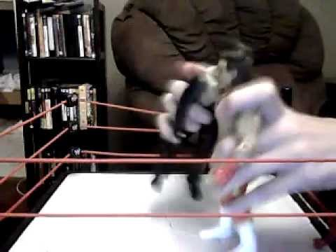 Brutus Vs Undertaker Part 4 Final Fight Travel Video