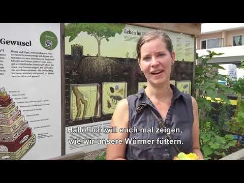 Von Wurmkompostierung, Reis und Süßkartoffeln mit Klima-Realtalk!
