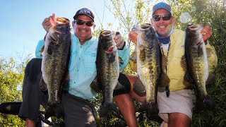 Giant Florida Everglades Largemouth Bass Secrets Revealed