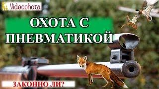Охота с пневматикой! Законно ли? Videoohota