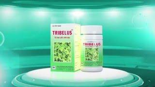 TV COMMERCIAL TRIBILUS/15S