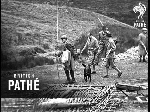 Opening Of The Grouse Shooting In Dumfriesshire (1937)