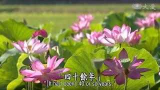 【靜思妙蓮華】20181218 - 久行佛道 住弘誓願 - 第1503集
