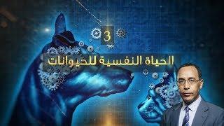 ((ويتفكّرون 2)): الحياة النفسية للحيوانات