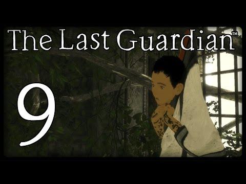 THE LAST GUARDIAN Part 9: Unfreiwilliges Abhängen