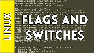 Flags, Switches, and Manual Pages - Introduction to Linux for Absolute Beginners #6