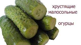 малосольные огурцы. рецепт хрустящих малосольных огурцов как приготовить