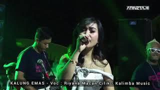 Baru Viral !!! KALUNG EMAS - Riyana Macan Cilik - Kalimba Musik live Sambi