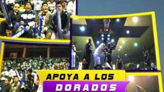 Dorados de Chihuahua Basketball - Magia pura sobre la duela